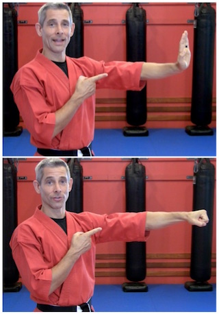 Palm Heel Strike or Punch in a Real-Life Fight? - Sensei Ando
